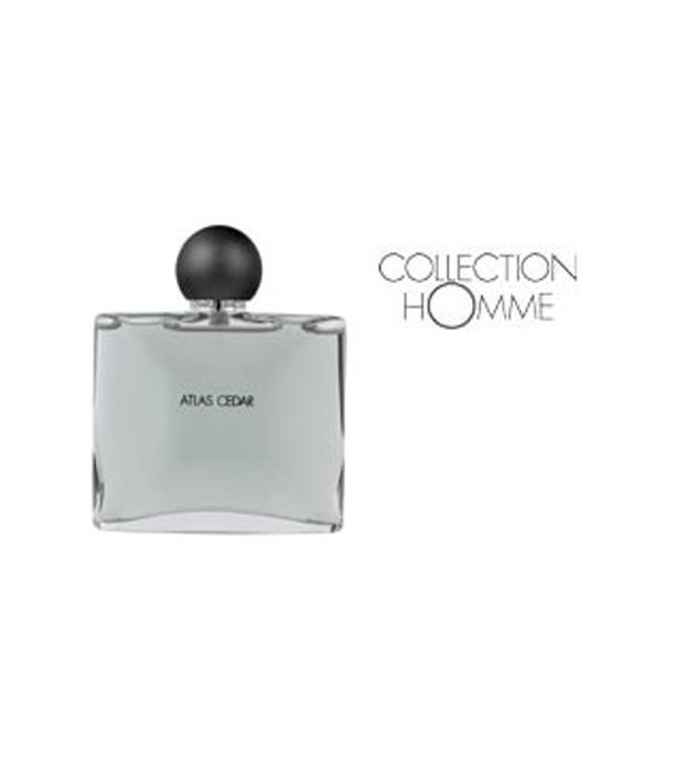 COLLECTION HOMME EDT